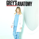 Grey's Anatomy - Dans la tourmente artwork
